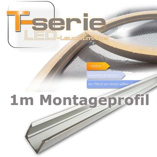 Montageprofil T-Serie
