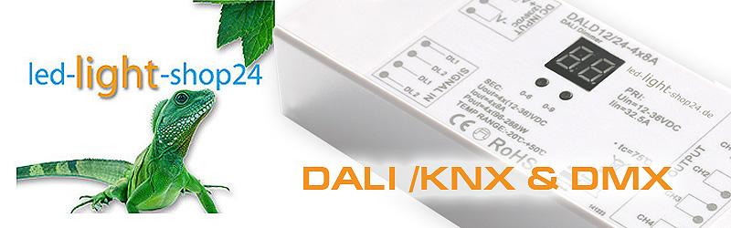 DALI, DMX Steuerung für LED Stripes